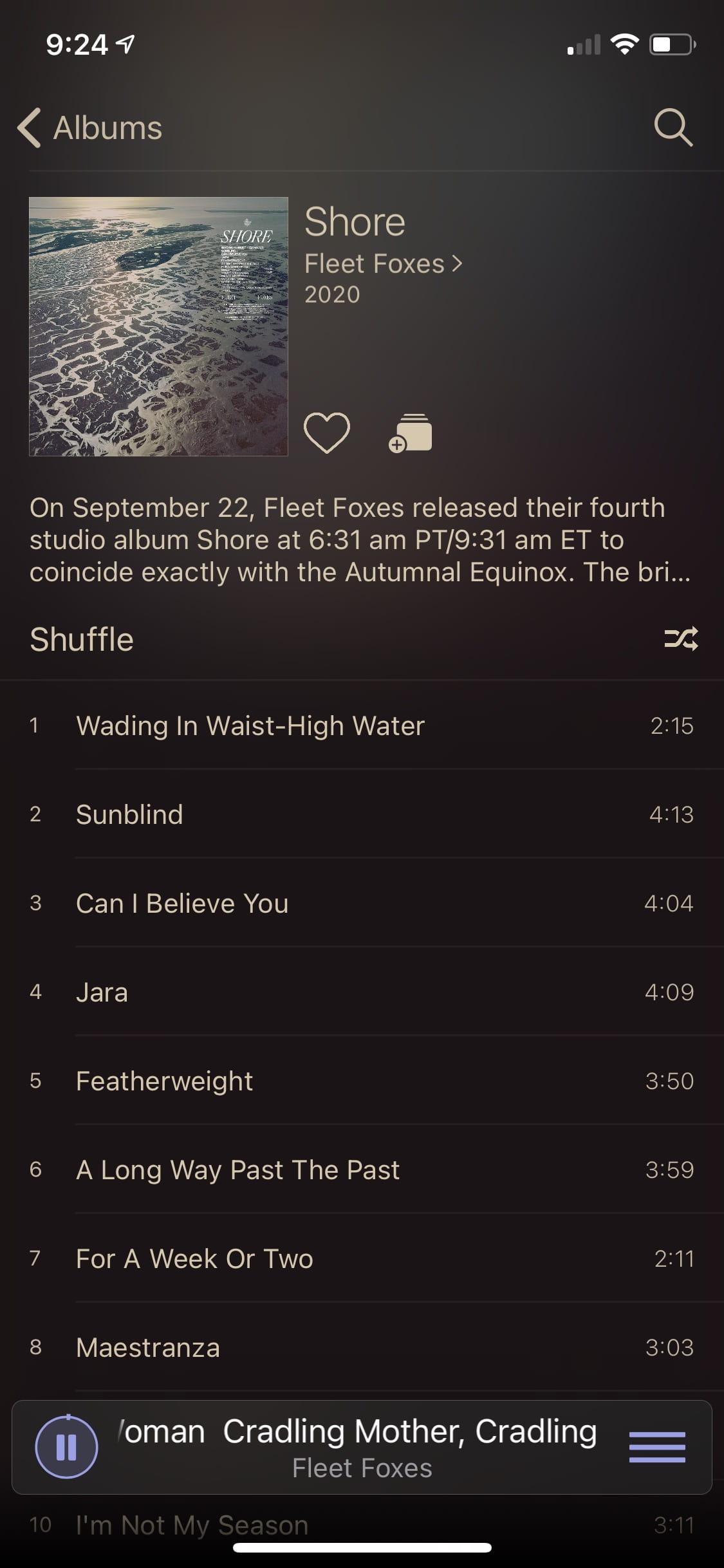 """Image of """"Plum"""" dark theme album view"""