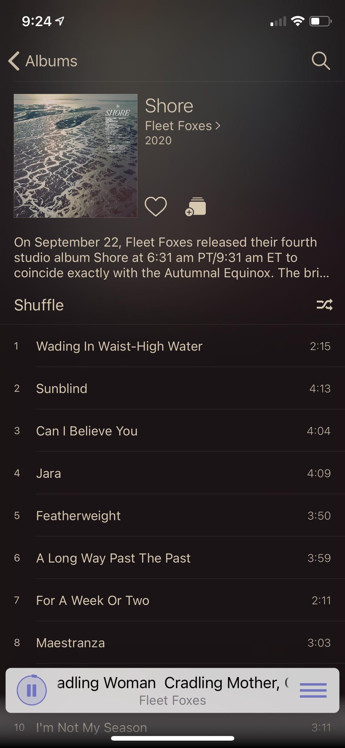 "Image of ""Plum"" light theme album view"