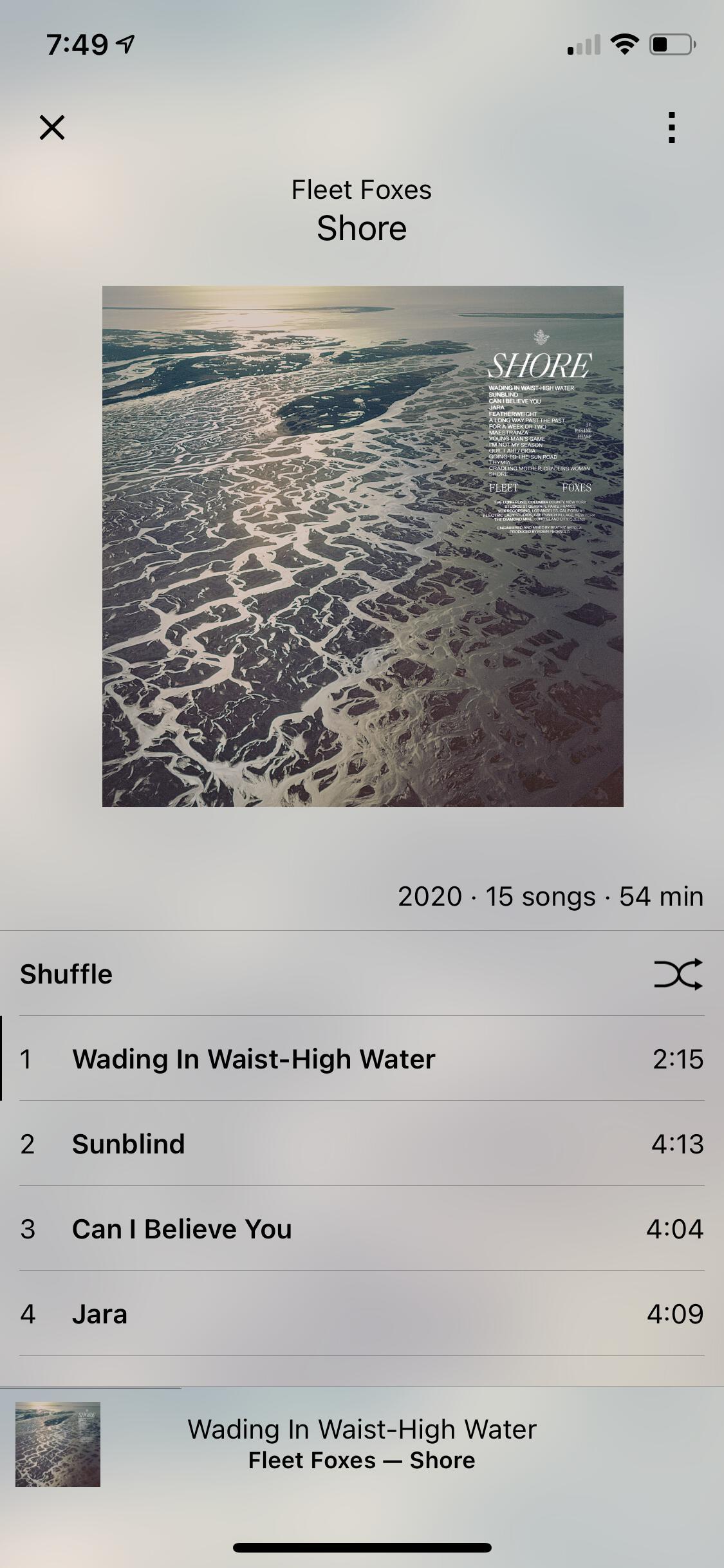 Image of 'TapTunes' light theme album view